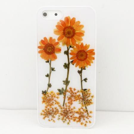 iPhone 6 case iPhone 6 plus Pressed Flower, iPhone 5/5s case, iPhone 4/4s case, 5c case Galaxy S4 S5 Note 2 note 3 Real Flower case F01